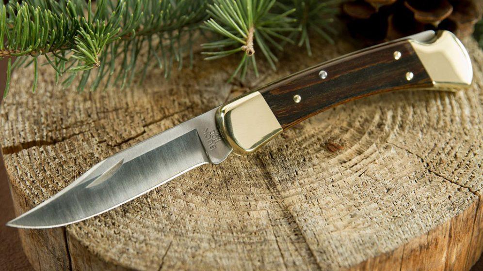 Buck 110 Folding Hunter