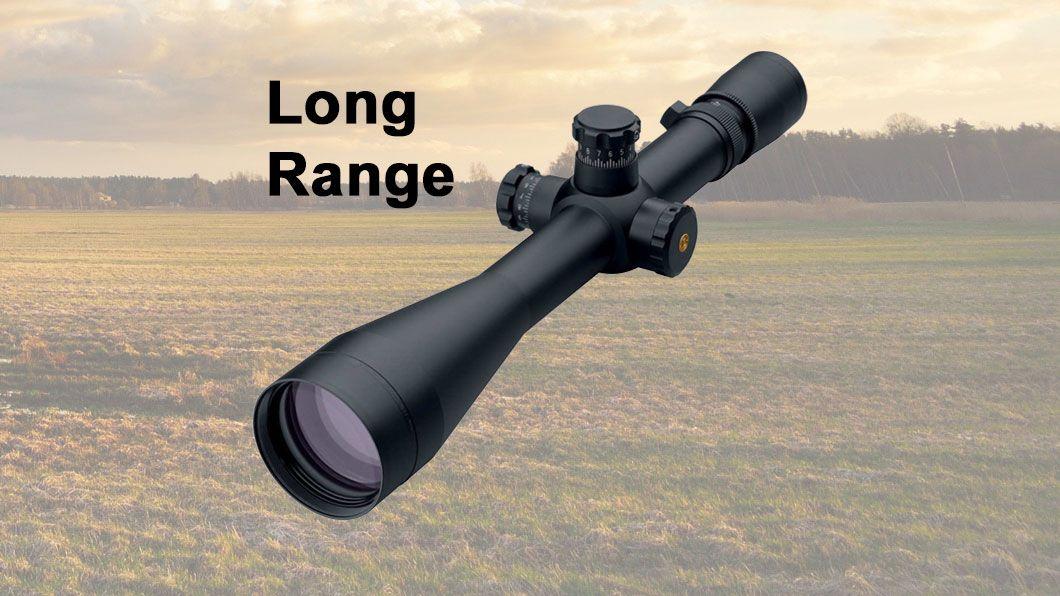 scope over long field