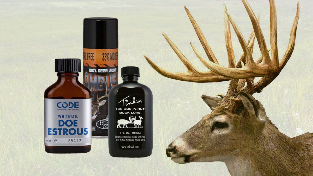 deer attractants